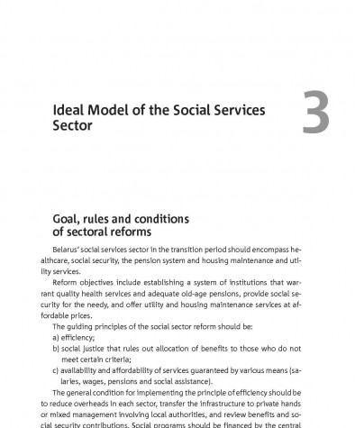 Ideal Model of the Social Services Sector